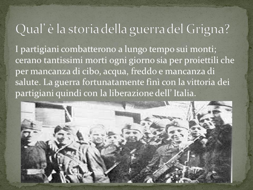 Qual' è la storia della guerra del Grigna