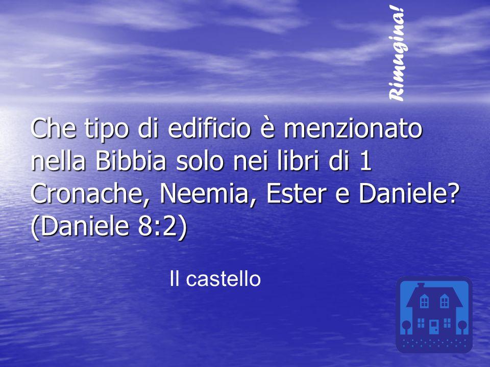Rimugina! Che tipo di edificio è menzionato nella Bibbia solo nei libri di 1 Cronache, Neemia, Ester e Daniele (Daniele 8:2)