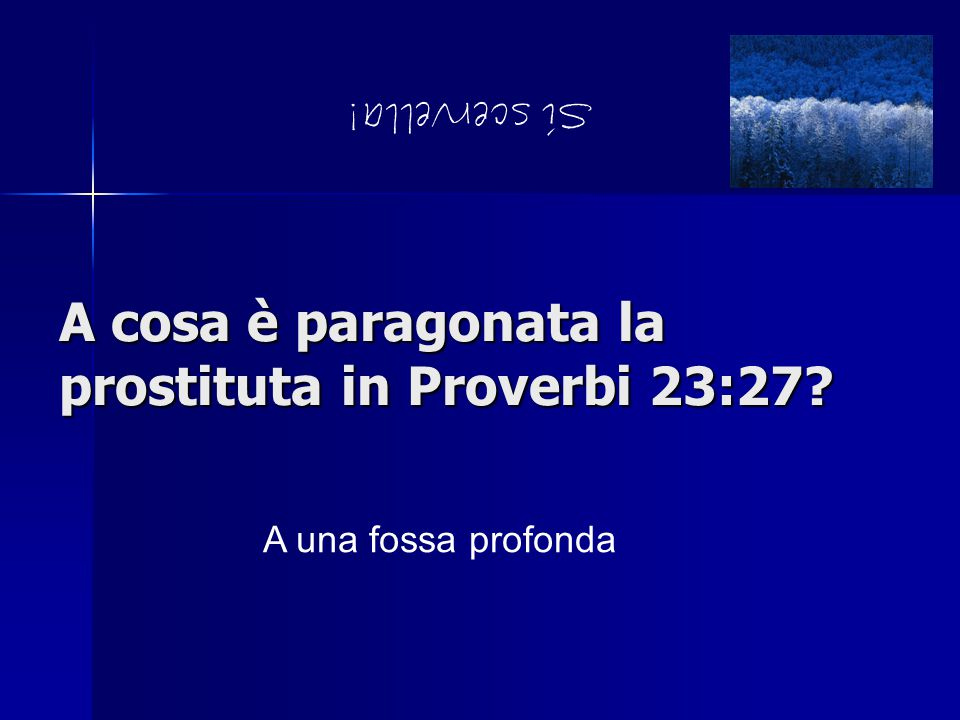 A cosa è paragonata la prostituta in Proverbi 23:27