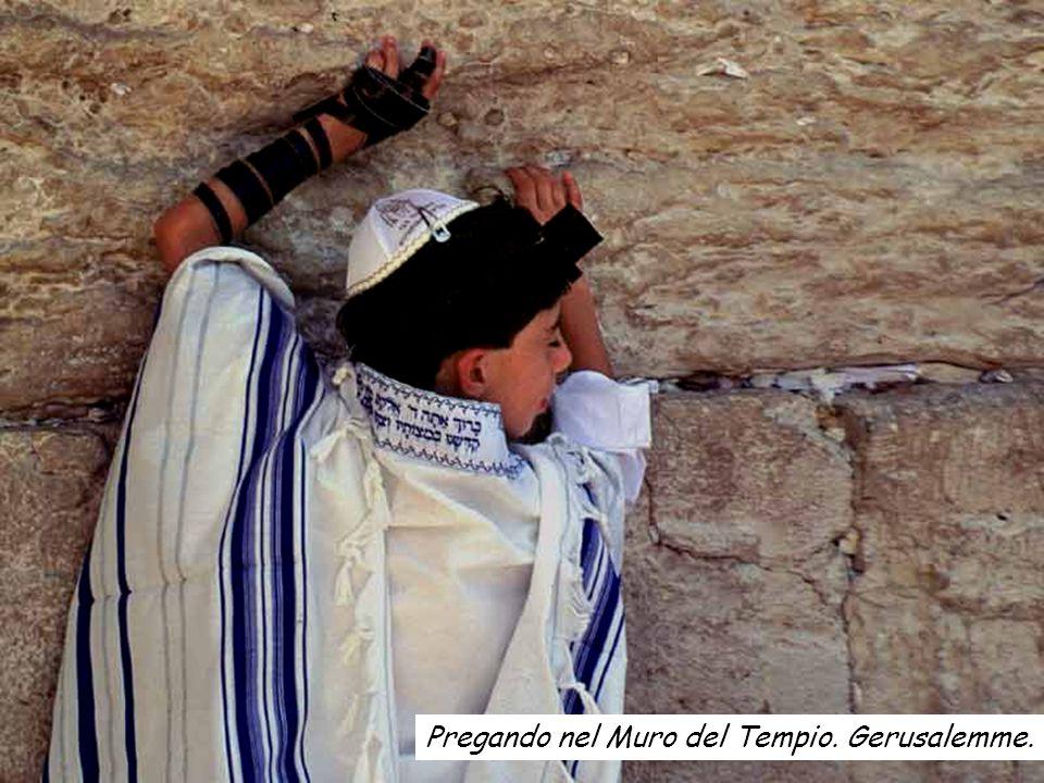 Pregando nel Muro del Tempio. Gerusalemme.