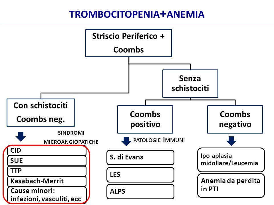 trombocitopenia+anemia sindromi microangiopatiche