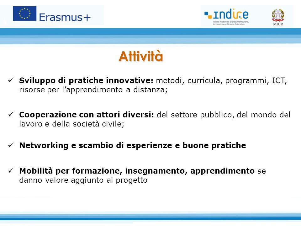 Attività Sviluppo di pratiche innovative: metodi, curricula, programmi, ICT, risorse per l'apprendimento a distanza;