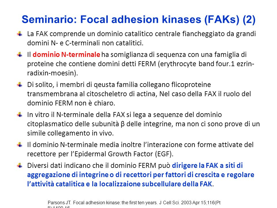 Seminario: Focal adhesion kinases (FAKs) (2)