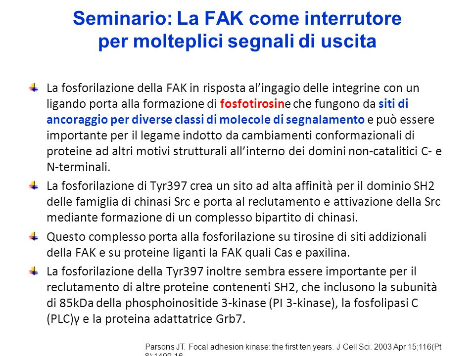 Seminario: La FAK come interrutore per molteplici segnali di uscita
