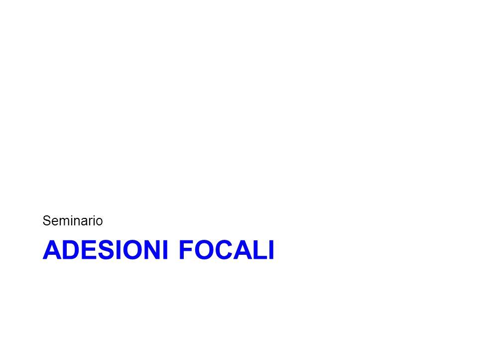 Seminario Adesioni focaLI