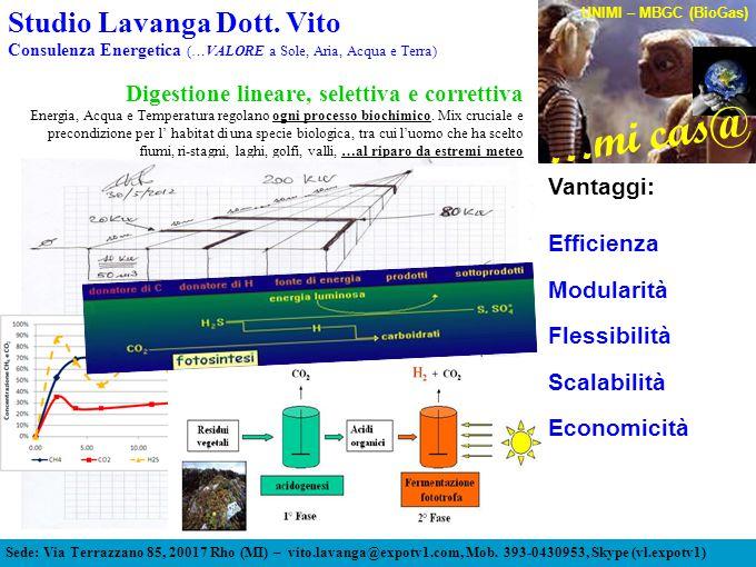 Digestione lineare, selettiva e correttiva