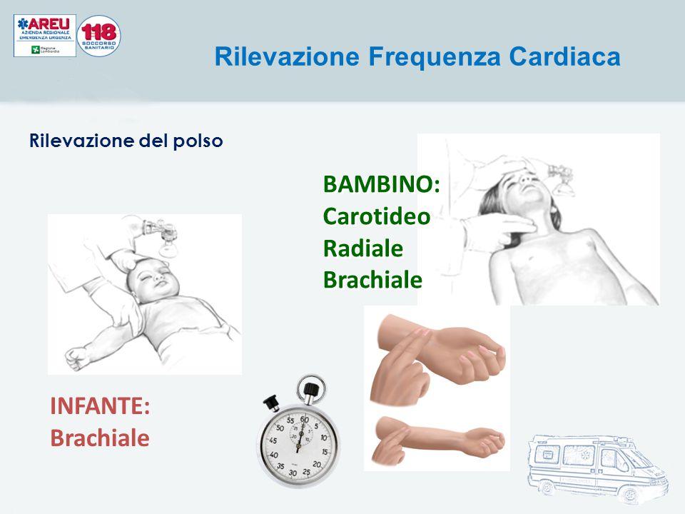 Carotideo Radiale Brachiale