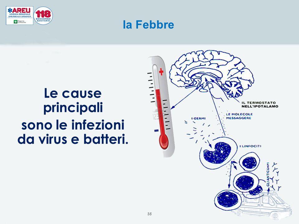 sono le infezioni da virus e batteri.