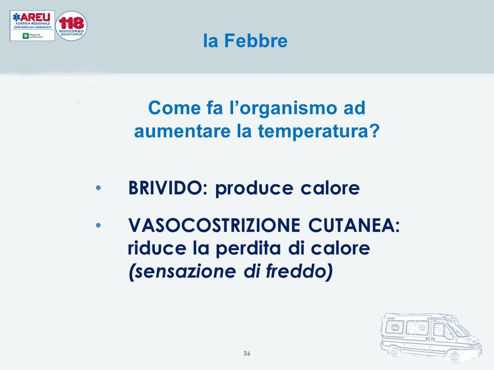 Come fa l'organismo ad aumentare la temperatura