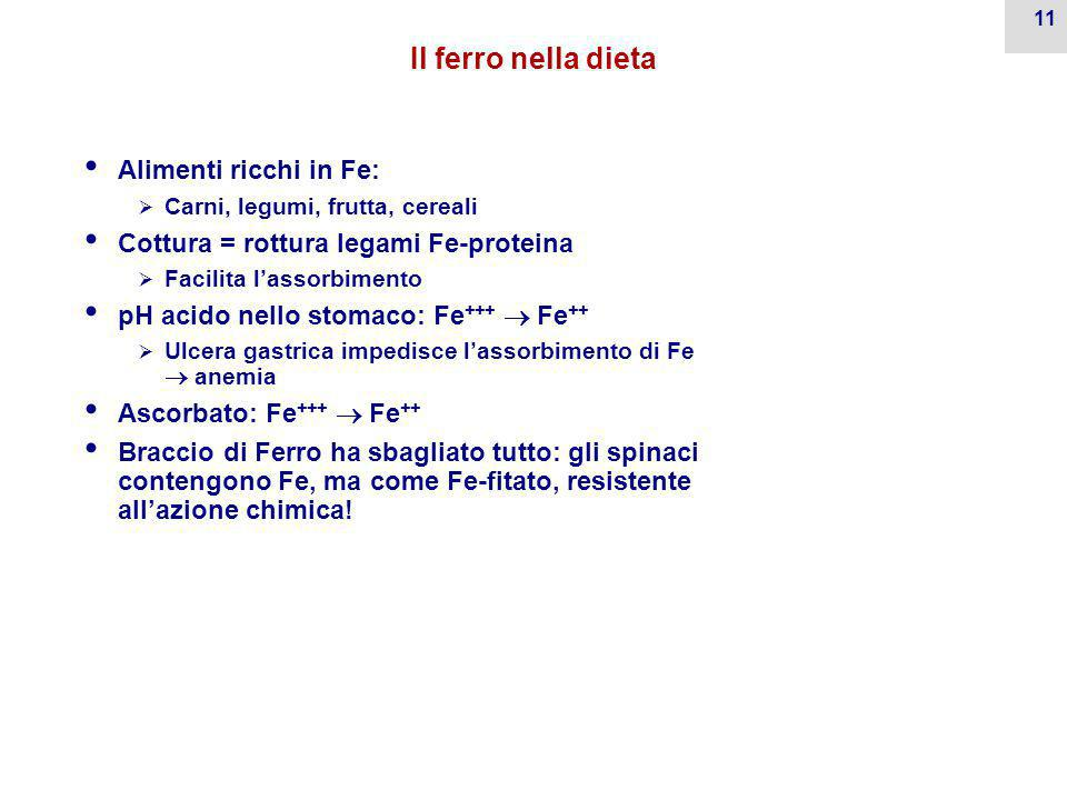 Il ferro nella dieta Alimenti ricchi in Fe: