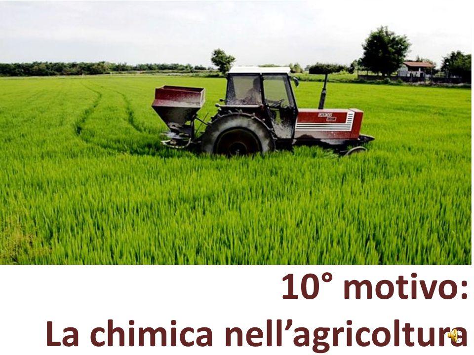 10° motivo: La chimica nell'agricoltura