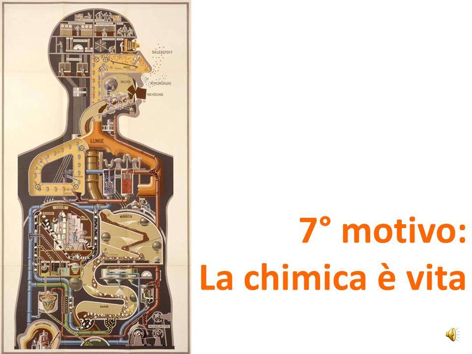 7° motivo: La chimica è vita