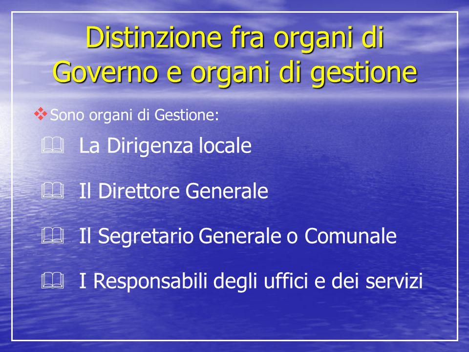 Distinzione fra organi di Governo e organi di gestione