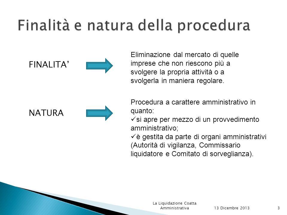 Finalità e natura della procedura