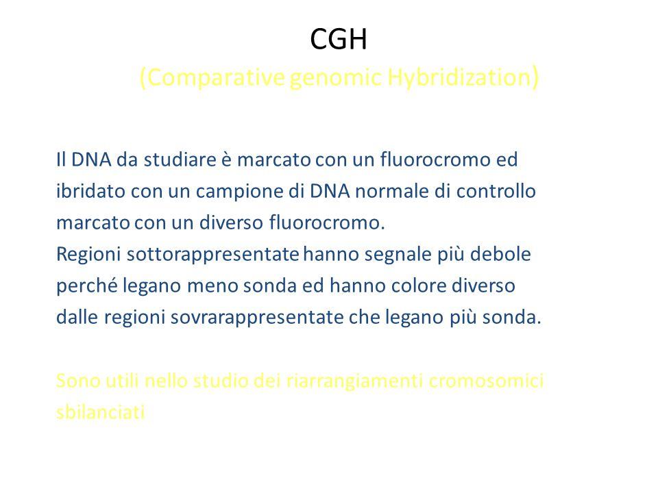 CGH (Comparative genomic Hybridization)