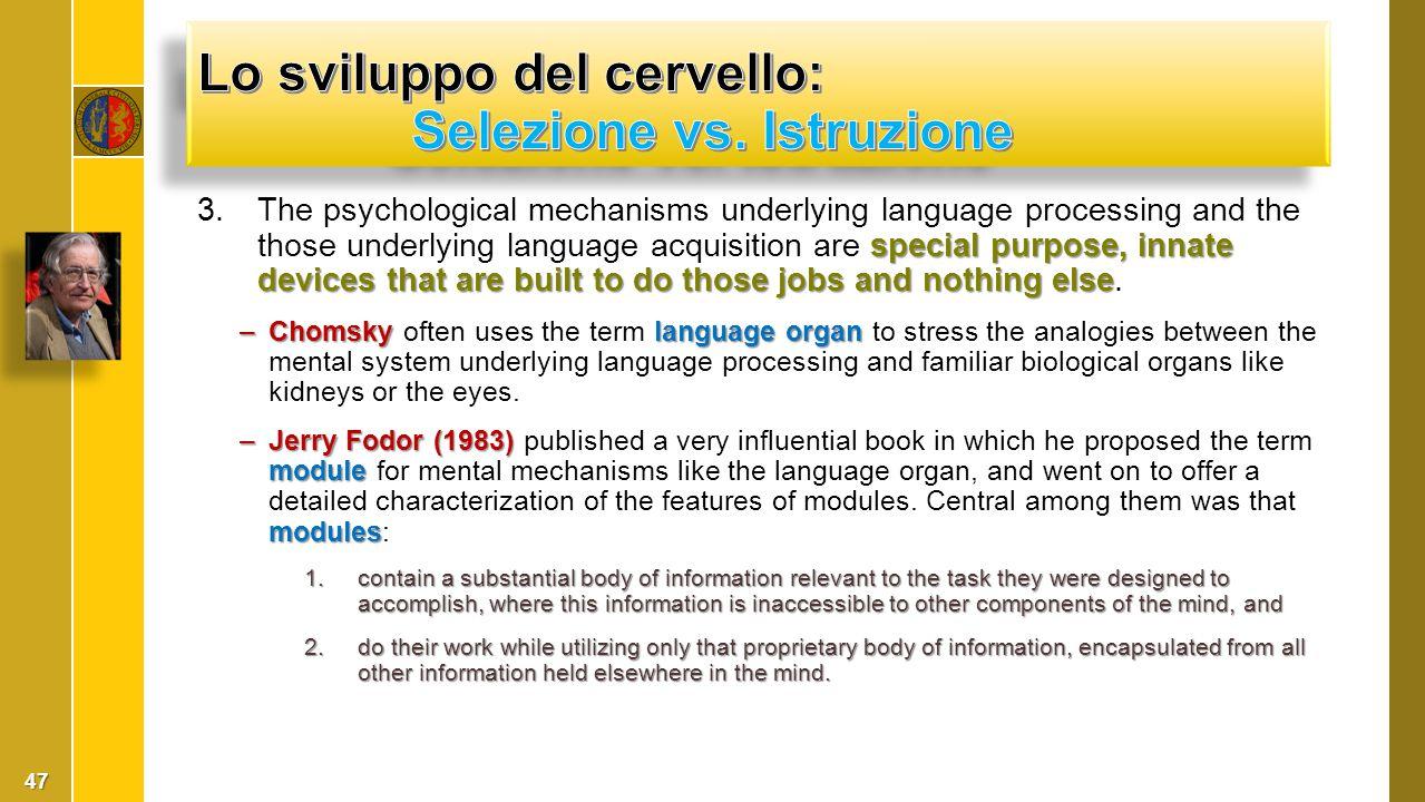 Lo sviluppo del cervello: Selezione vs. Istruzione
