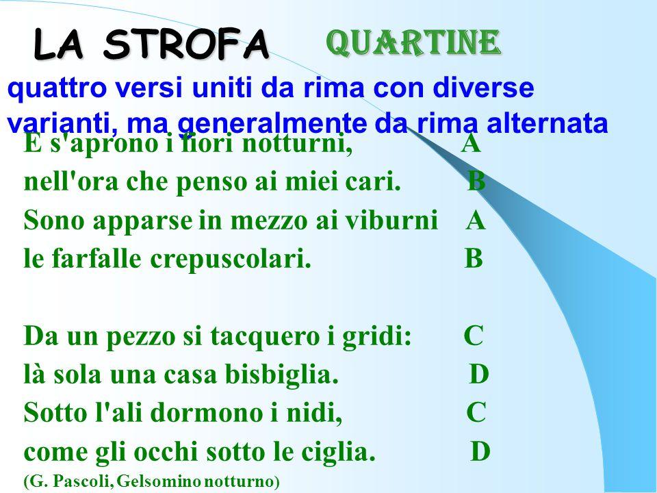 QUARTINE LA STROFA. quattro versi uniti da rima con diverse varianti, ma generalmente da rima alternata.