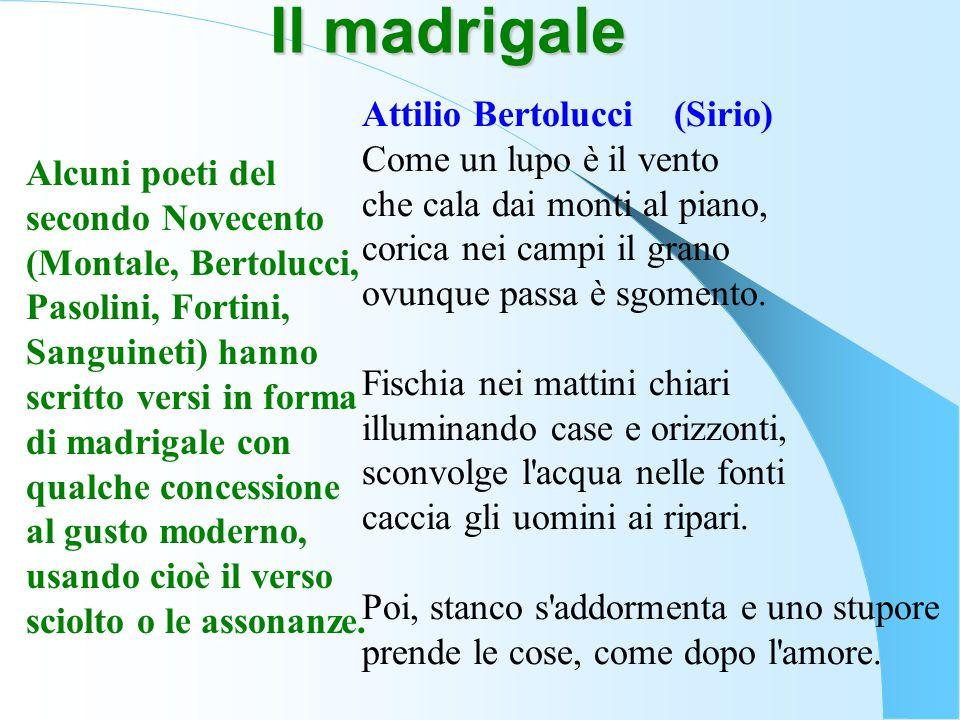 Il madrigale Attilio Bertolucci (Sirio)