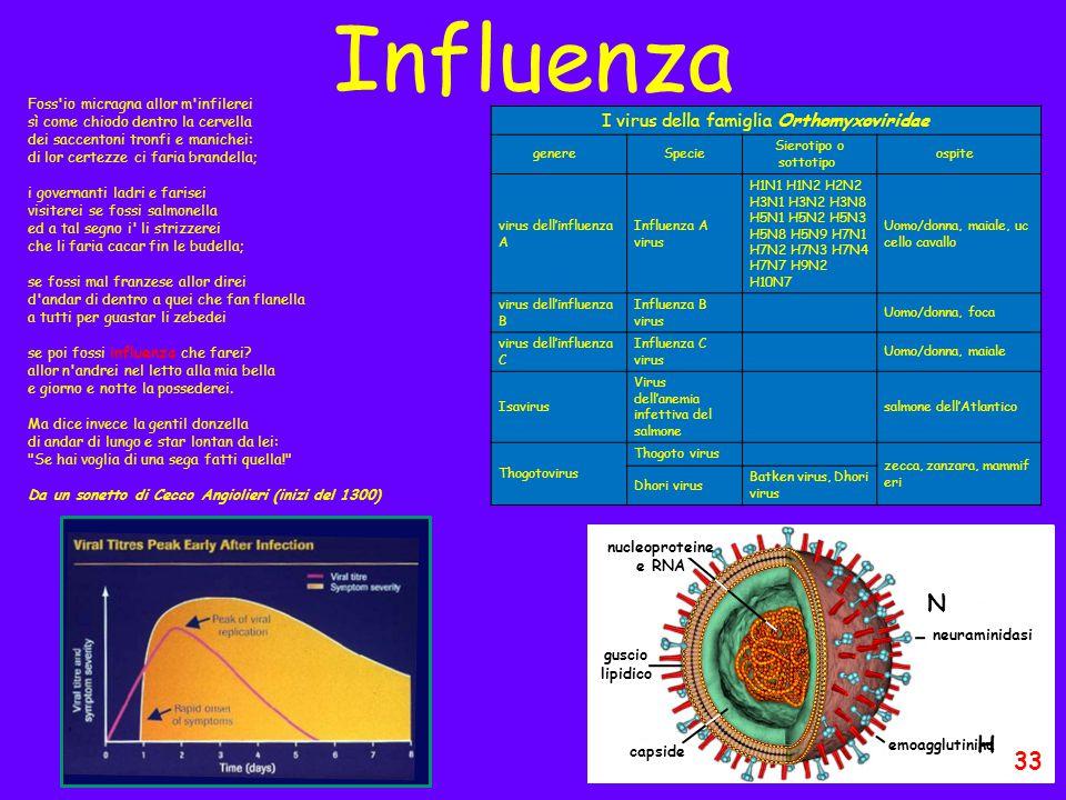 I virus della famiglia Orthomyxoviridae