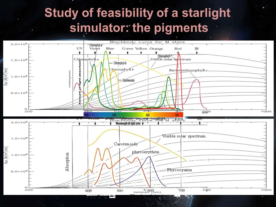 Study of feasibility of a starlight simulator: the pigments
