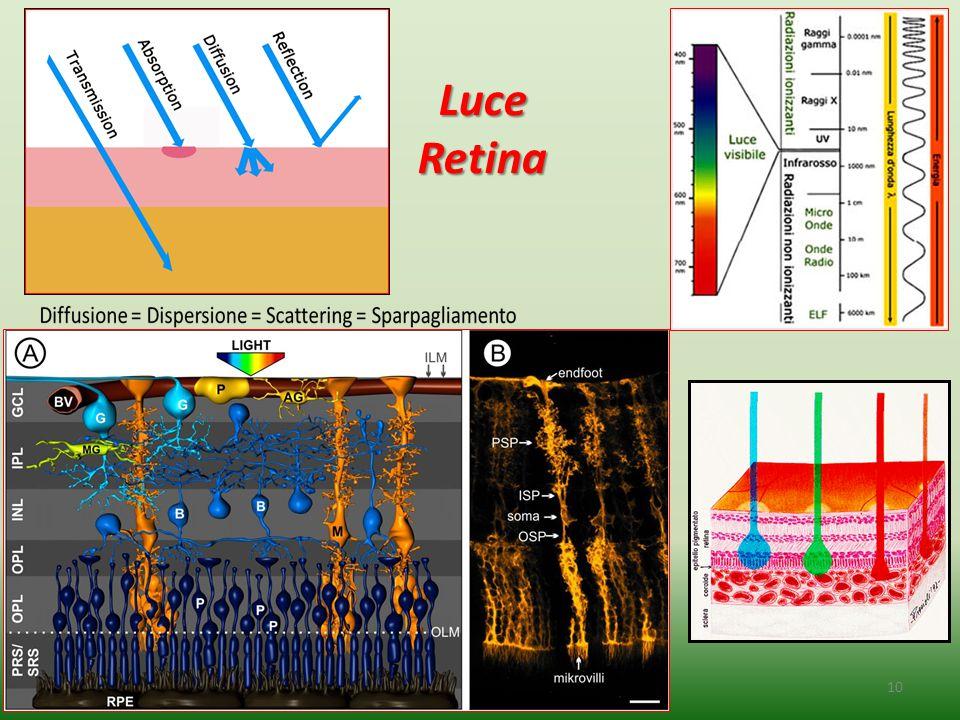 Luce Retina