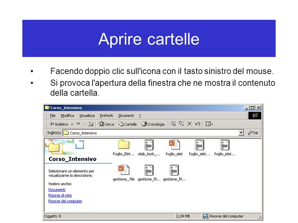 Aprire cartelle Facendo doppio clic sull icona con il tasto sinistro del mouse.