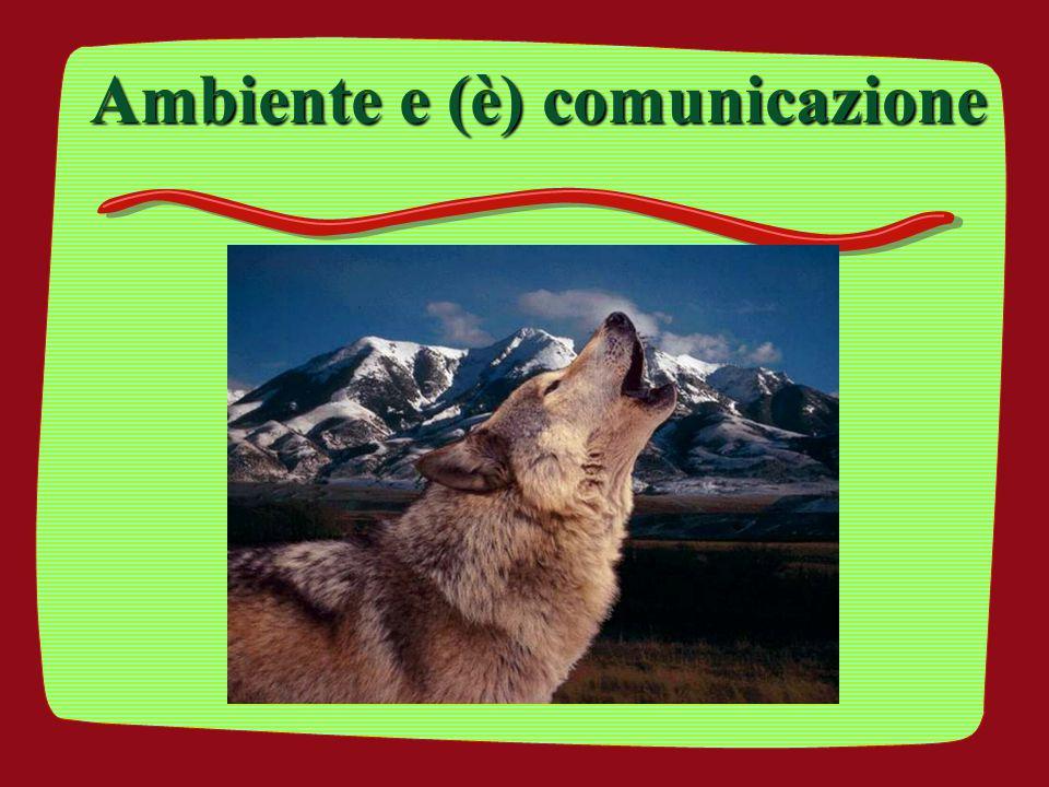 Ambiente e (è) comunicazione