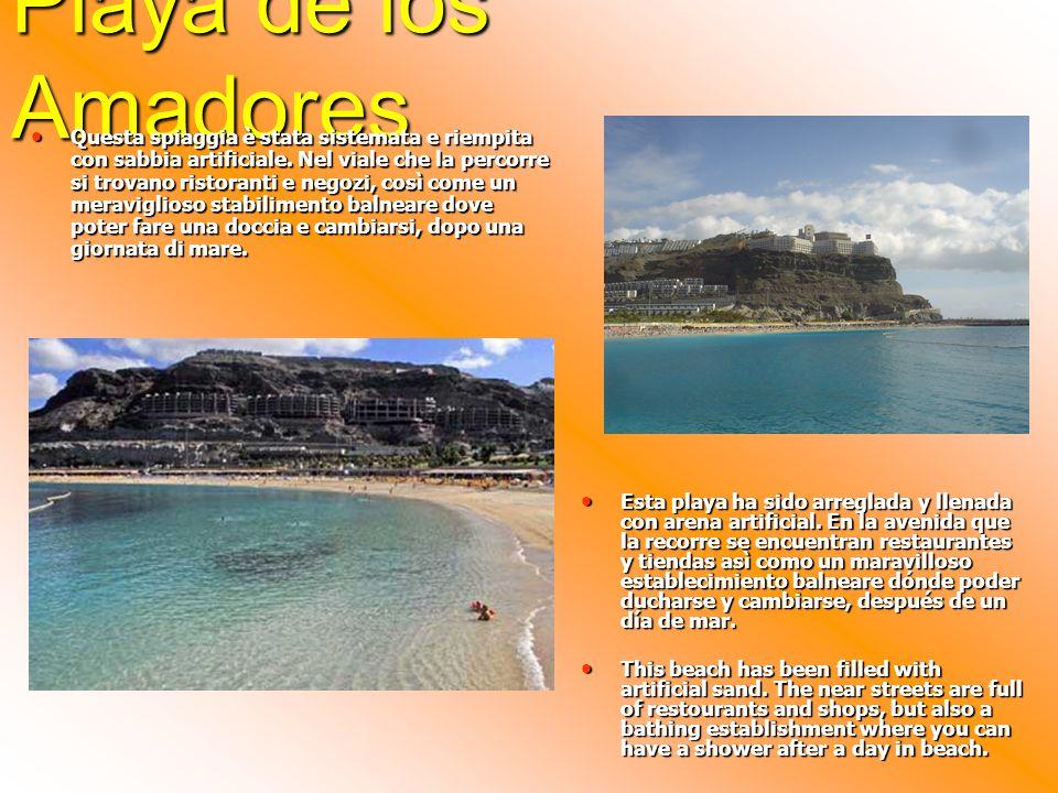 Playa de los Amadores