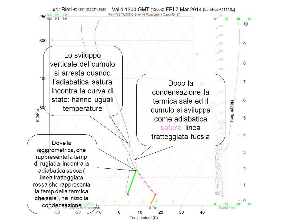Lo sviluppo verticale del cumulo si arresta quando l'adiabatica satura incontra la curva di stato: hanno uguali temperature