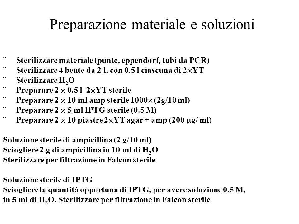 Preparazione materiale e soluzioni