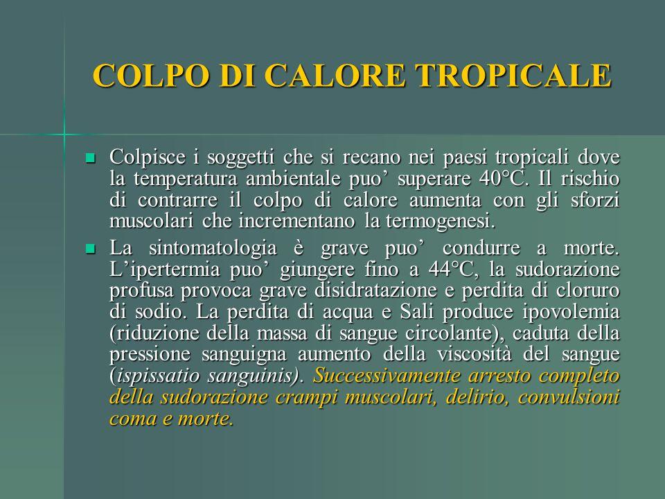 COLPO DI CALORE TROPICALE