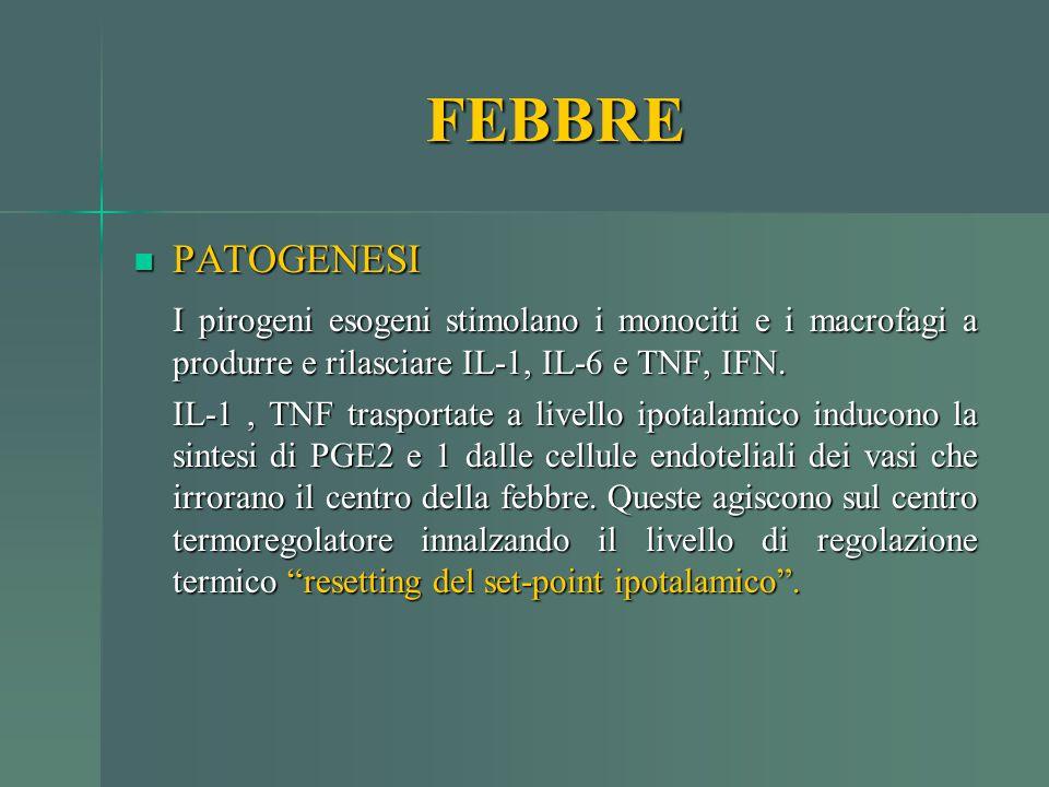 FEBBRE PATOGENESI. I pirogeni esogeni stimolano i monociti e i macrofagi a produrre e rilasciare IL-1, IL-6 e TNF, IFN.