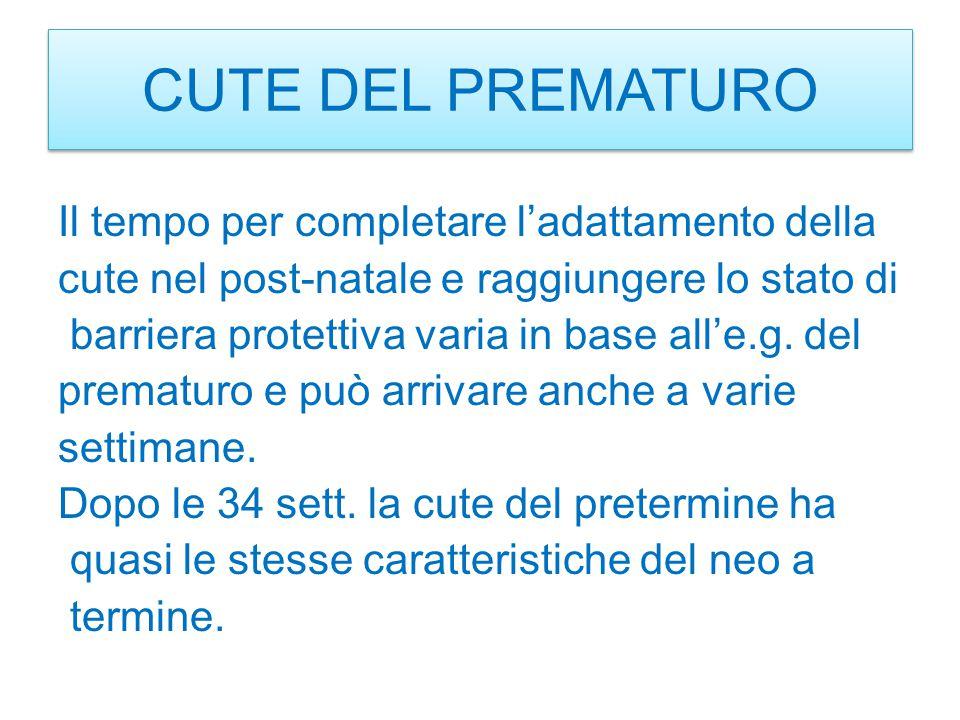 CUTE DEL PREMATURO