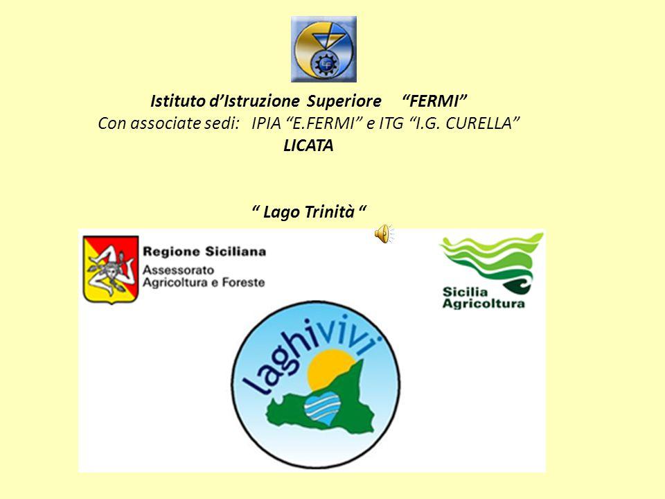 Istituto d'Istruzione Superiore FERMI Con associate sedi: IPIA E