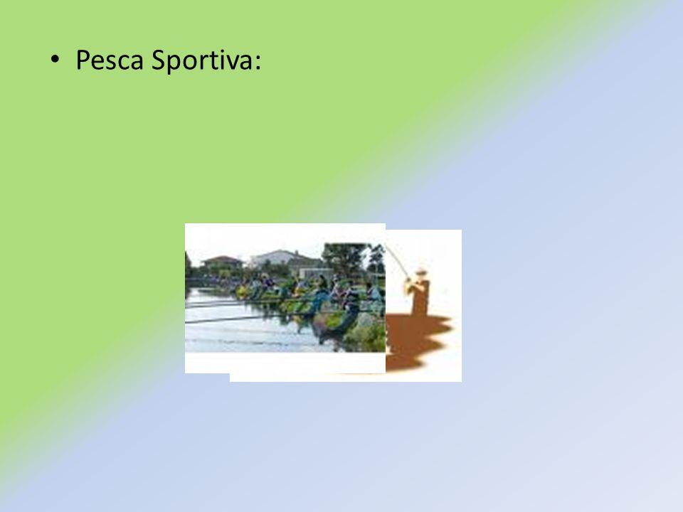 Pesca Sportiva: