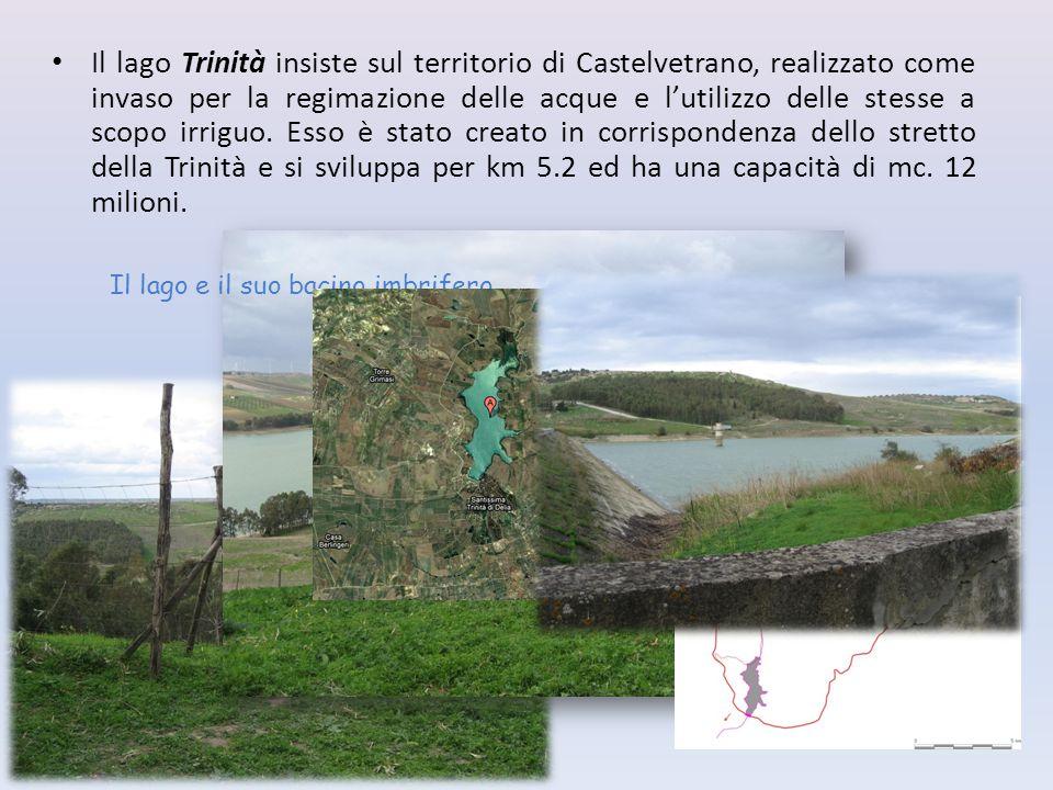 Il lago Trinità insiste sul territorio di Castelvetrano, realizzato come invaso per la regimazione delle acque e l'utilizzo delle stesse a scopo irriguo. Esso è stato creato in corrispondenza dello stretto della Trinità e si sviluppa per km 5.2 ed ha una capacità di mc. 12 milioni.