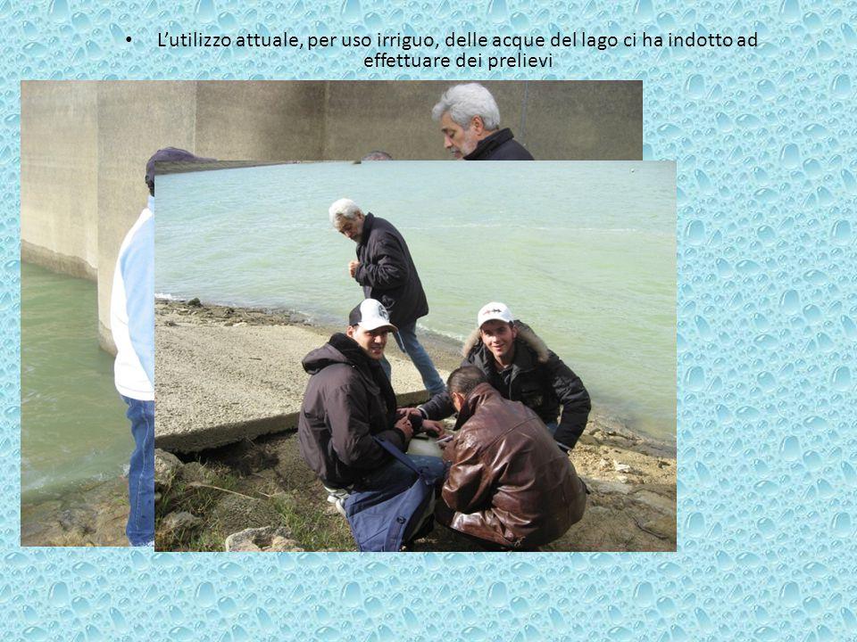 L'utilizzo attuale, per uso irriguo, delle acque del lago ci ha indotto ad effettuare dei prelievi