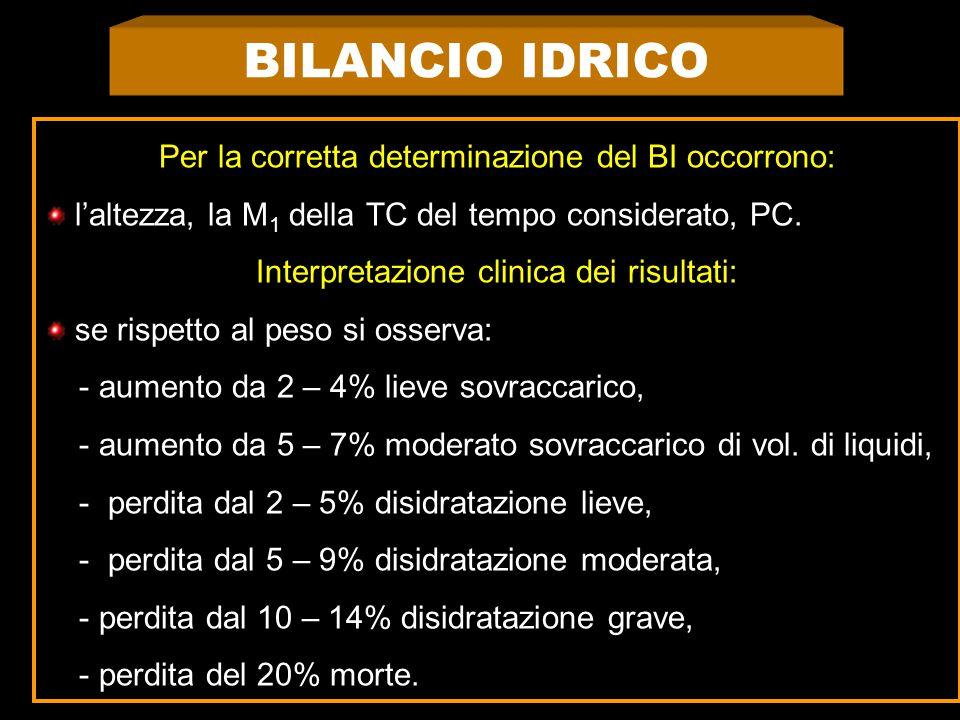 BILANCIO IDRICO Per la corretta determinazione del BI occorrono: