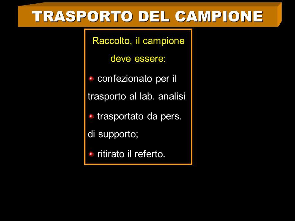 TRASPORTO DEL CAMPIONE