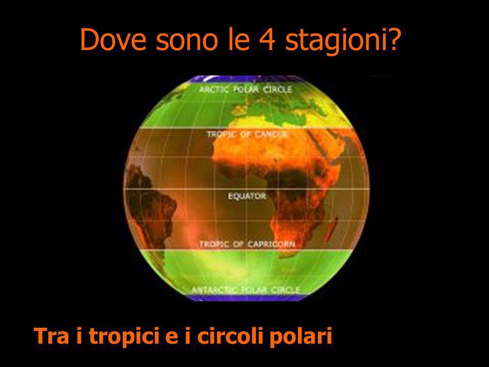 Dove sono le 4 stagioni Tra i tropici e i circoli polari