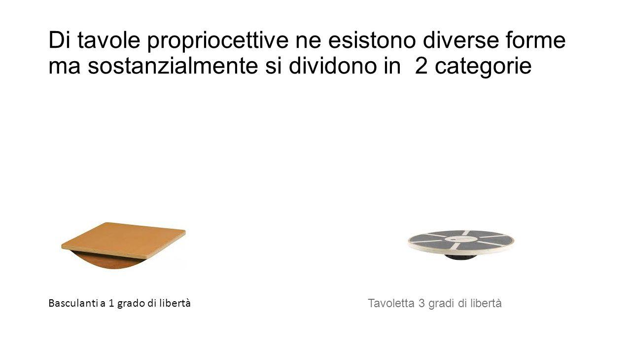 Di tavole propriocettive ne esistono diverse forme ma sostanzialmente si dividono in 2 categorie