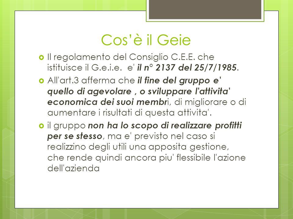 Cos'è il Geie Il regolamento del Consiglio C.E.E. che istituisce il G.e.i.e. e il n° 2137 del 25/7/1985.