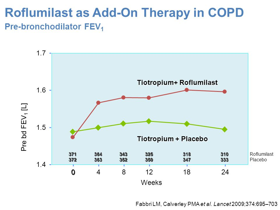 Roflumilast as Add-On Therapy in COPD