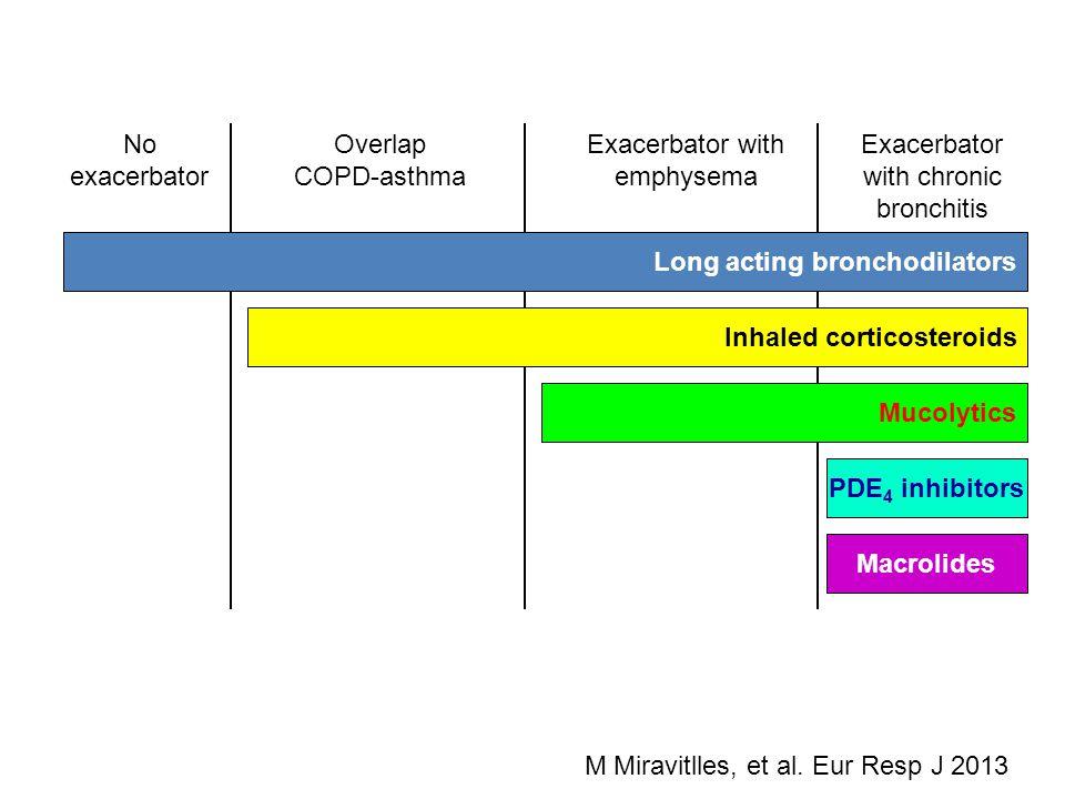 Exacerbator with emphysema