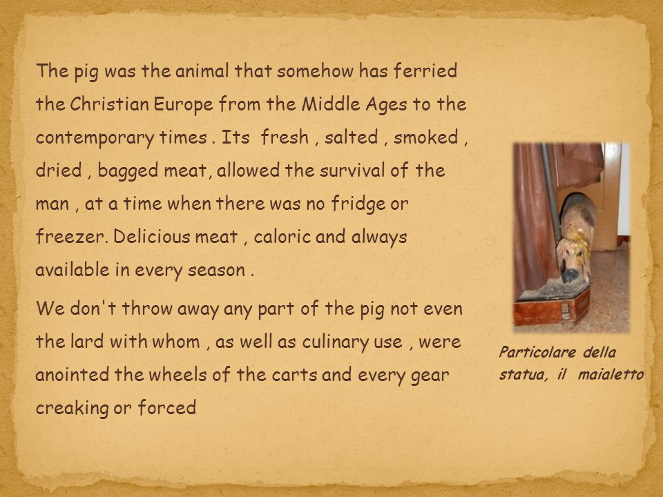 The pig was the animal that somehow has ferried the Christian Europe from the Middle Ages to the contemporary times . Its fresh , salted , smoked , dried , bagged meat, allowed the survival of the man , at a time when there was no fridge or freezer. Delicious meat , caloric and always available in every season .