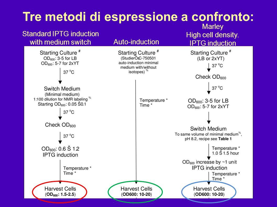 Tre metodi di espressione a confronto: