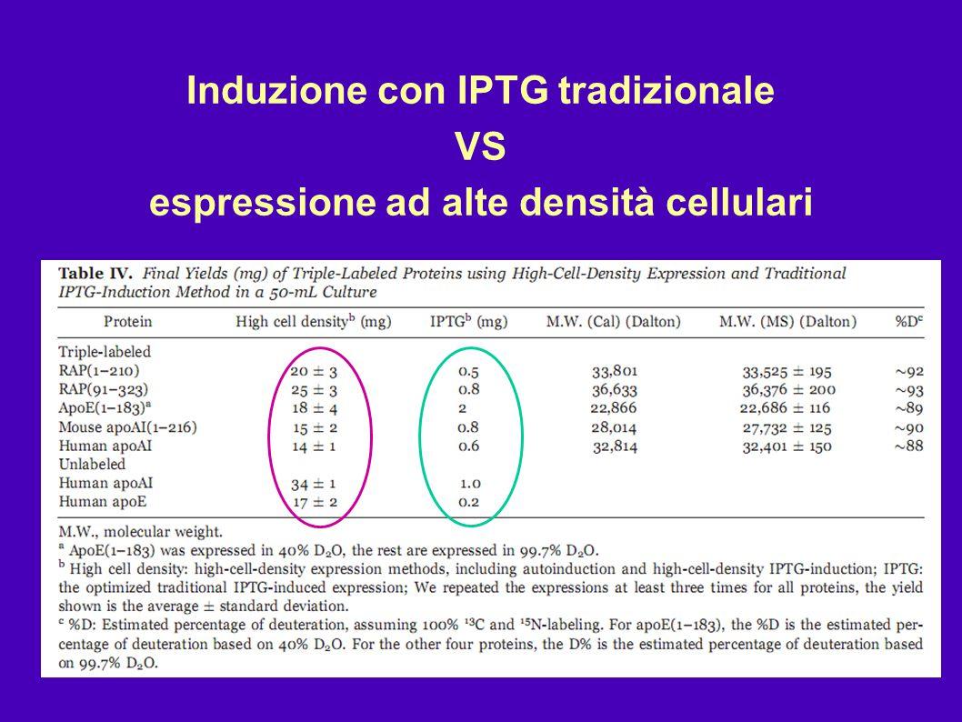Induzione con IPTG tradizionale espressione ad alte densità cellulari