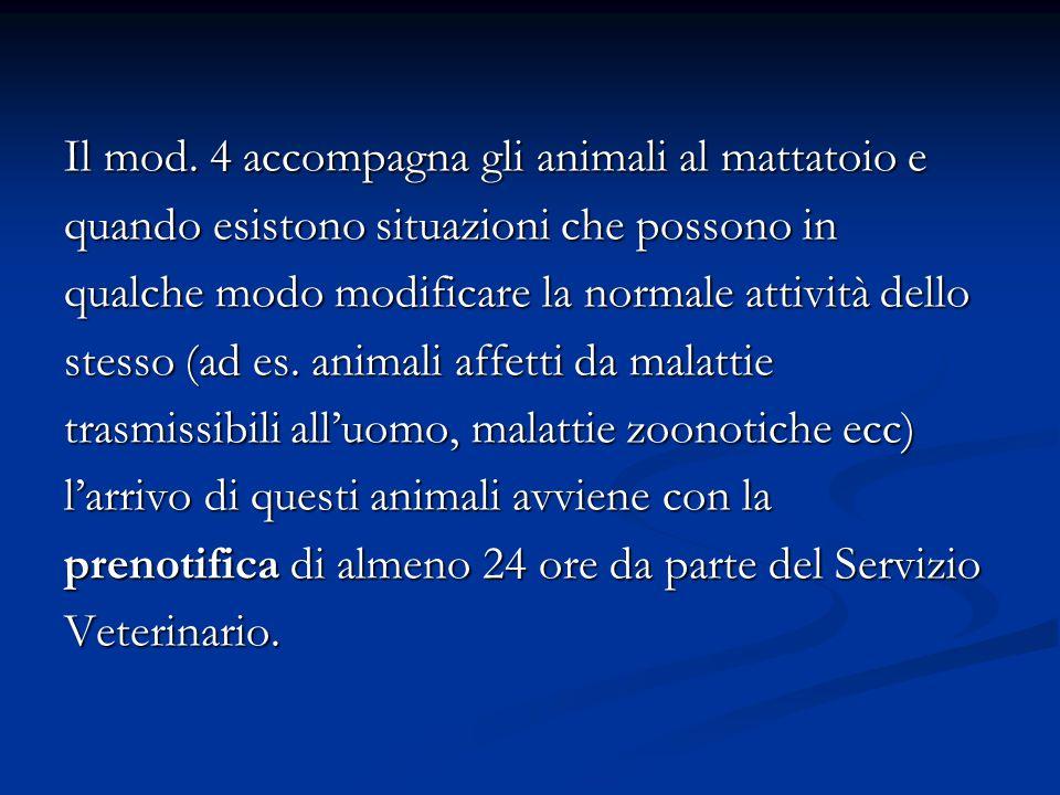 Il mod. 4 accompagna gli animali al mattatoio e