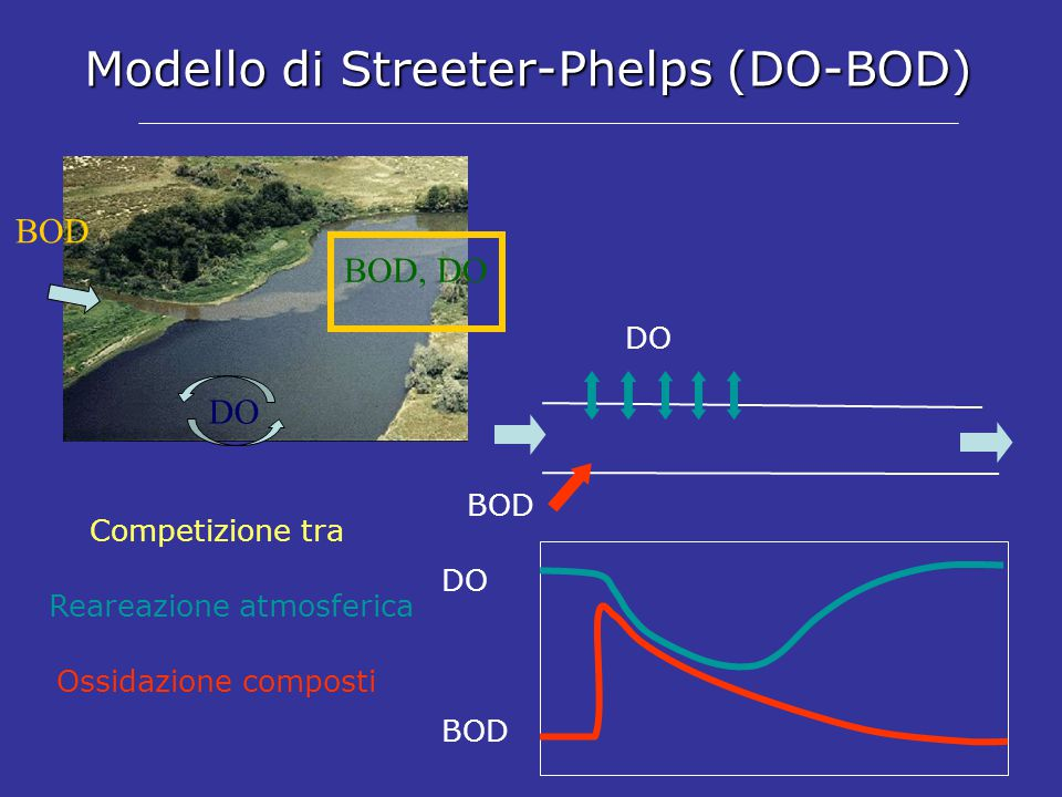 Modello di Streeter-Phelps (DO-BOD)