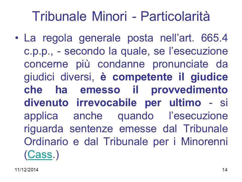 Tribunale Minori - Particolarità